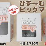 ひず〜む3種のビッグマフ丼(Original・Little・Nano)徹底比較レビュー【ていばん!】